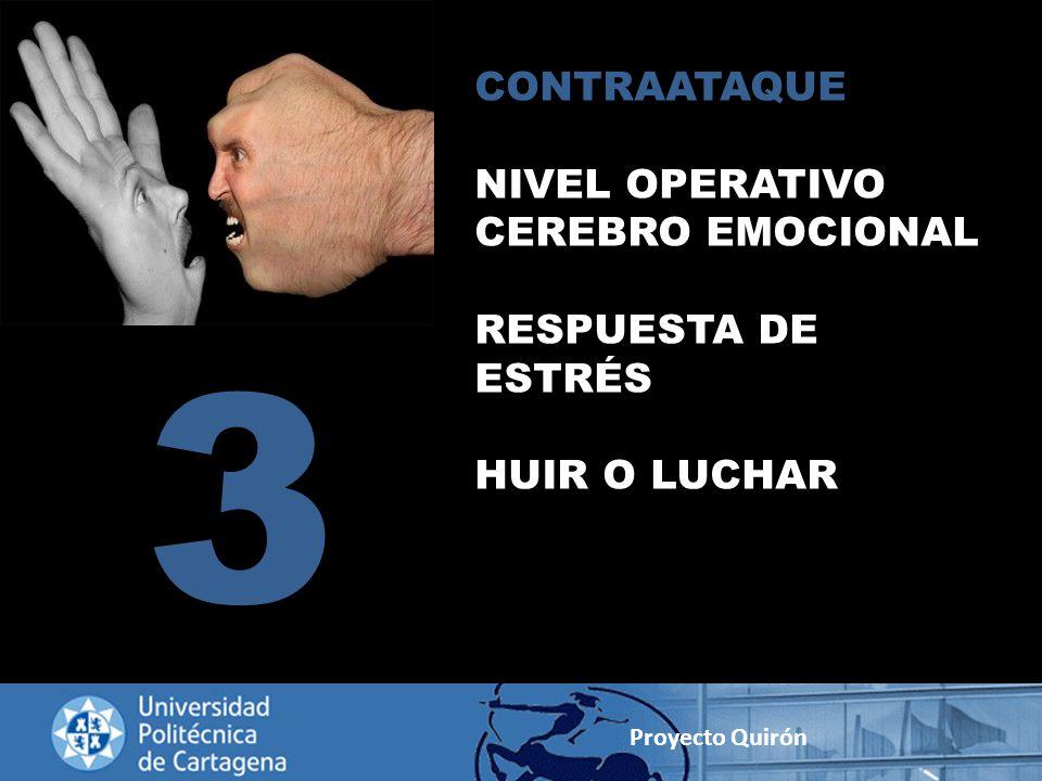 3 CONTRAATAQUE NIVEL OPERATIVO CEREBRO EMOCIONAL RESPUESTA DE ESTRÉS