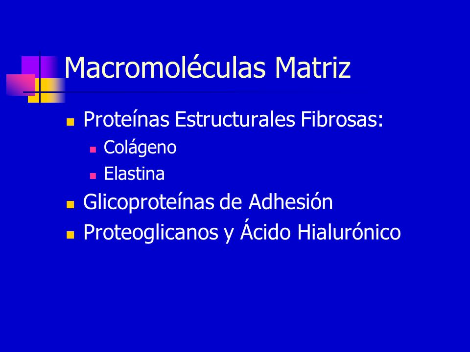 Macromoléculas Matriz