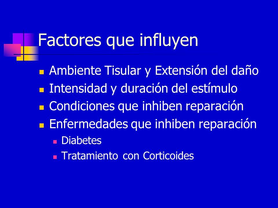 Factores que influyen Ambiente Tisular y Extensión del daño