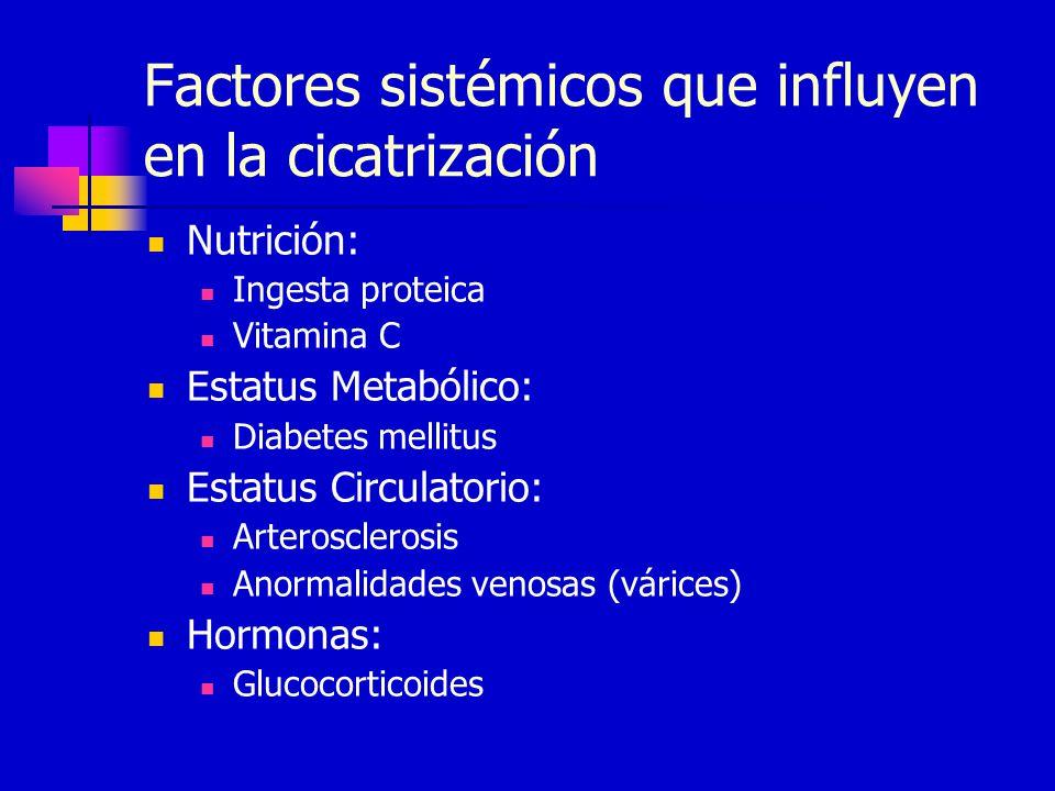 Factores sistémicos que influyen en la cicatrización