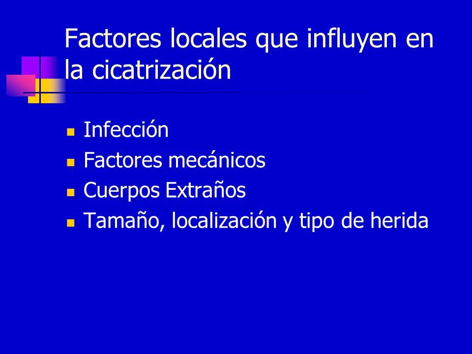 Factores locales que influyen en la cicatrización