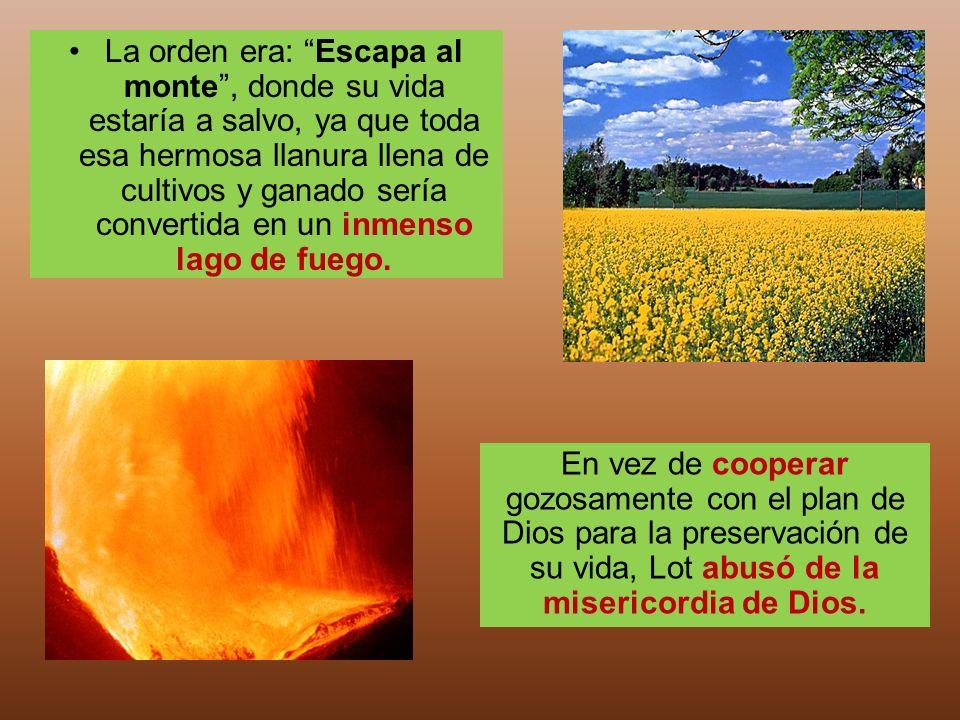 La orden era: Escapa al monte , donde su vida estaría a salvo, ya que toda esa hermosa llanura llena de cultivos y ganado sería convertida en un inmenso lago de fuego.