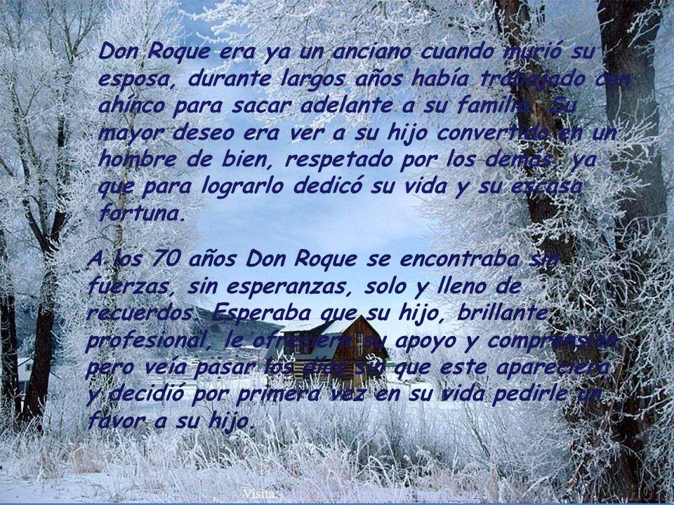 Don Roque era ya un anciano cuando murió su esposa, durante largos años había trabajado con ahínco para sacar adelante a su familia. Su mayor deseo era ver a su hijo convertido en un hombre de bien, respetado por los demás, ya que para lograrlo dedicó su vida y su escasa fortuna.