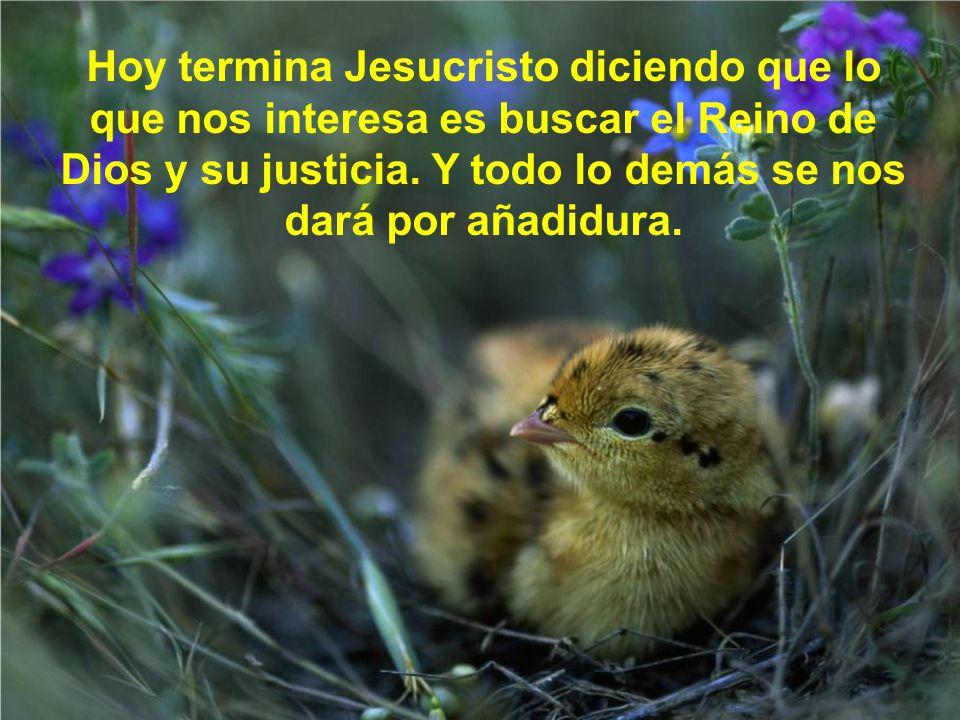 Hoy termina Jesucristo diciendo que lo que nos interesa es buscar el Reino de Dios y su justicia.