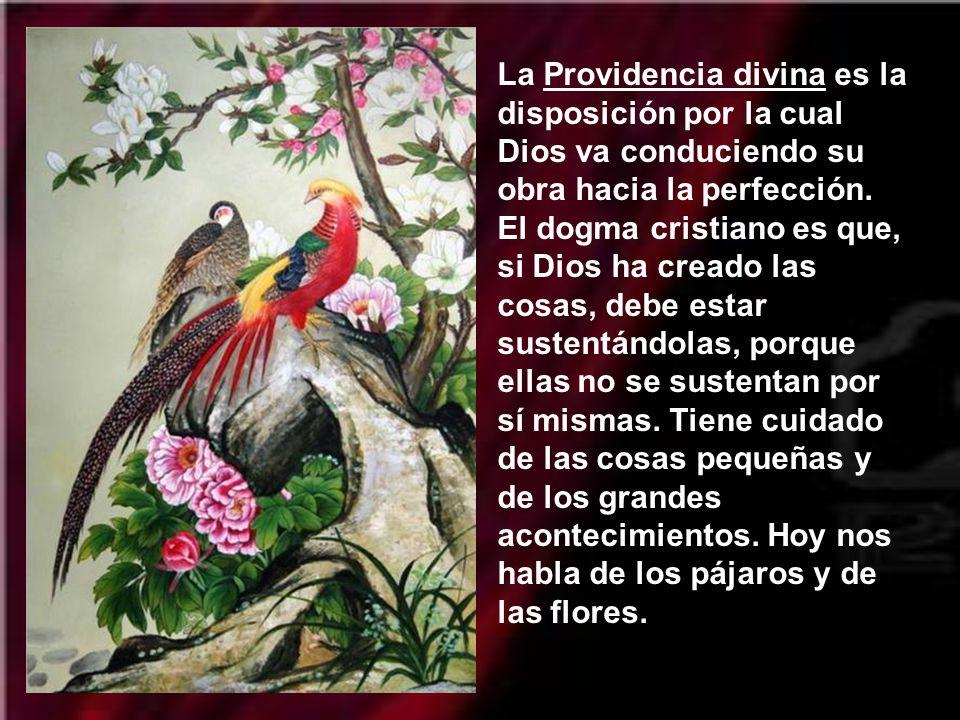 La Providencia divina es la disposición por la cual Dios va conduciendo su obra hacia la perfección.