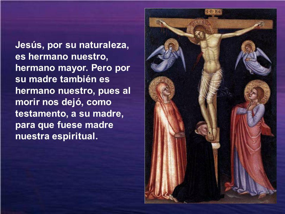 Jesús, por su naturaleza, es hermano nuestro, hermano mayor