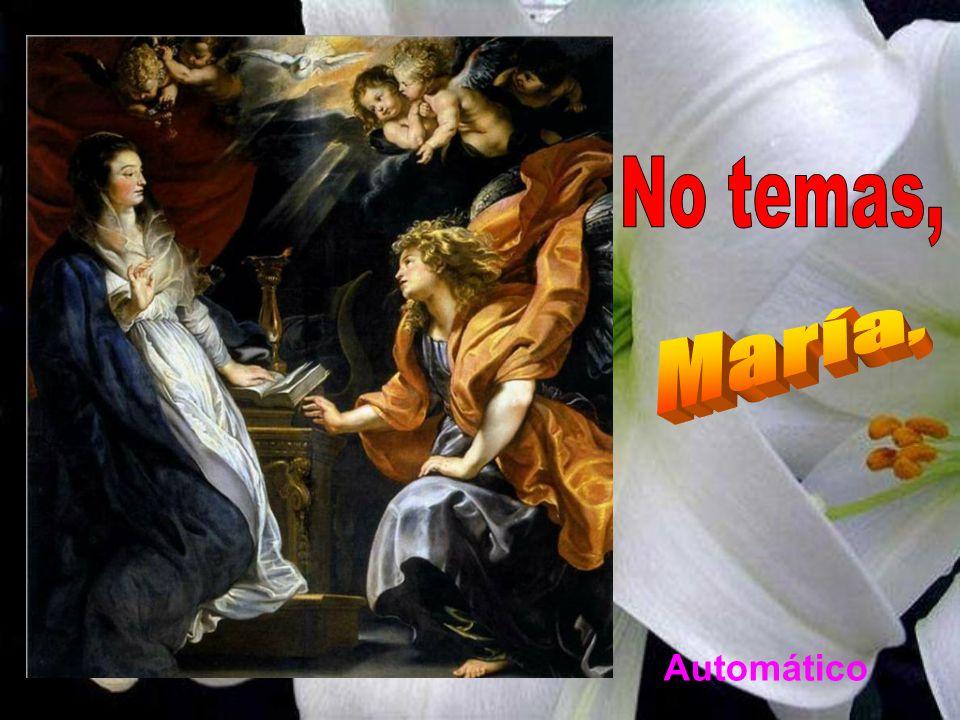 No temas, María, Automático