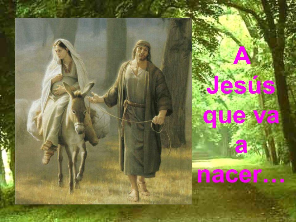 A Jesús que va a nacer…
