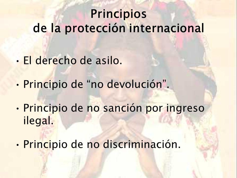 Principios de la protección internacional