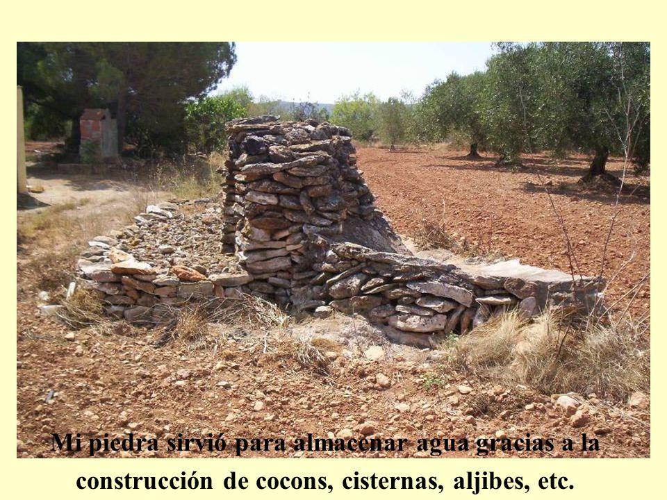 Mi piedra sirvió para almacenar agua gracias a la construcción de cocons, cisternas, aljibes, etc.