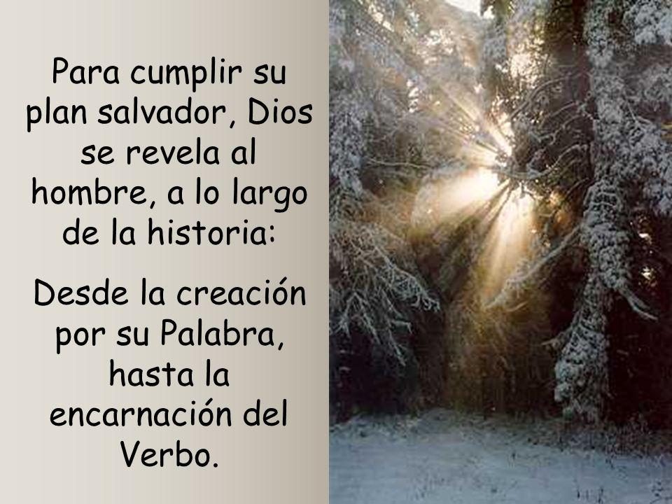 Desde la creación por su Palabra, hasta la encarnación del Verbo.
