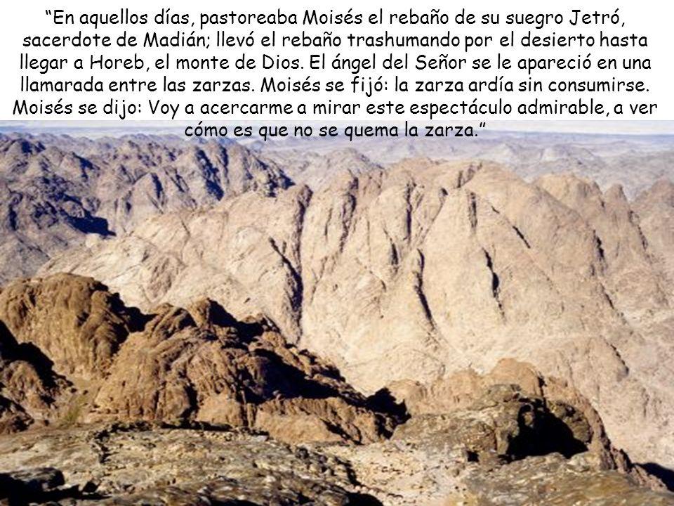 En aquellos días, pastoreaba Moisés el rebaño de su suegro Jetró, sacerdote de Madián; llevó el rebaño trashumando por el desierto hasta llegar a Horeb, el monte de Dios.