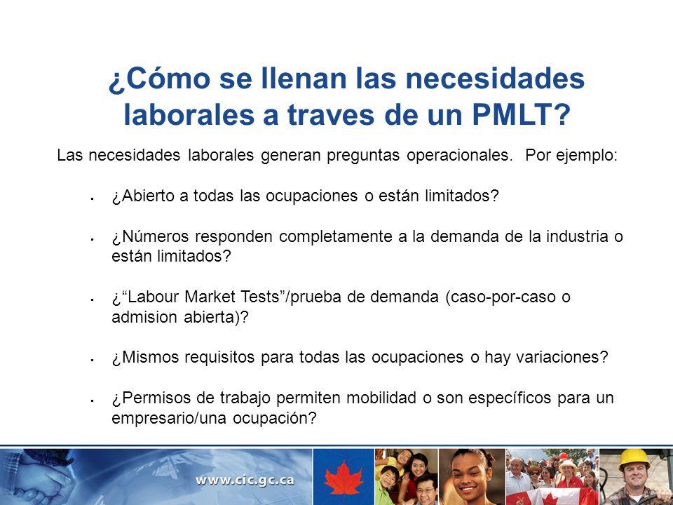 ¿Cómo se llenan las necesidades laborales a traves de un PMLT
