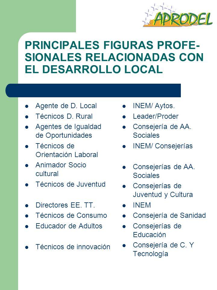 PRINCIPALES FIGURAS PROFE-SIONALES RELACIONADAS CON EL DESARROLLO LOCAL