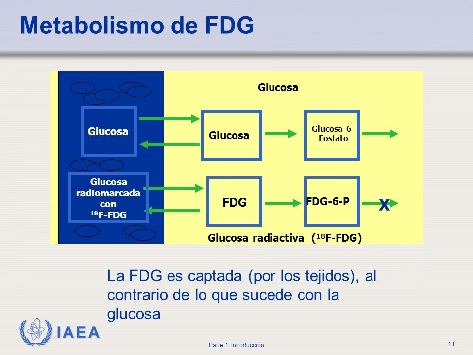 Glucosa radiomarcada con