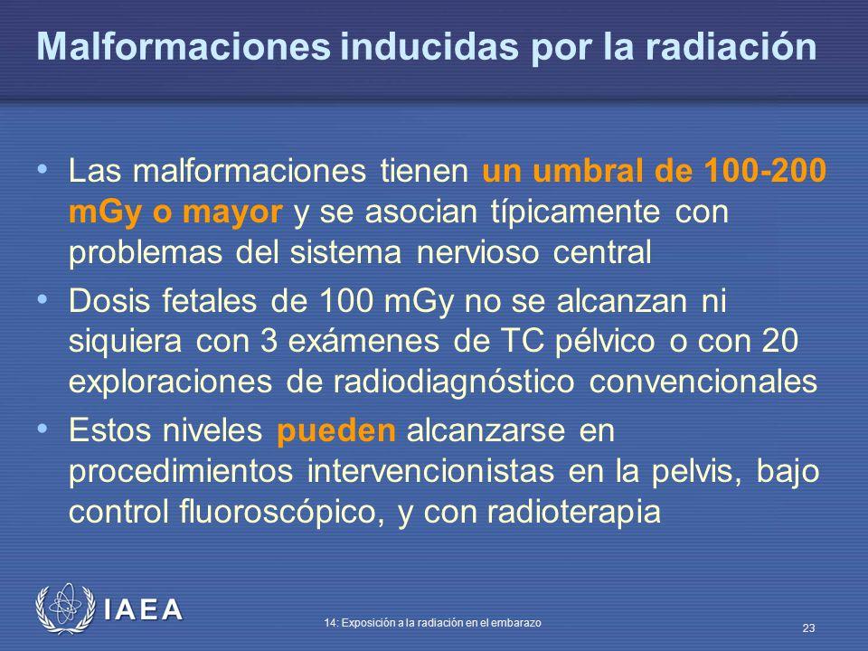 Malformaciones inducidas por la radiación