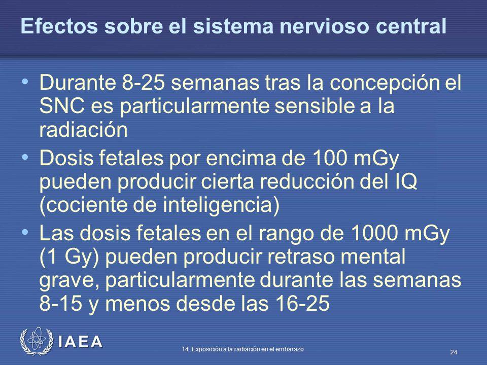 Efectos sobre el sistema nervioso central