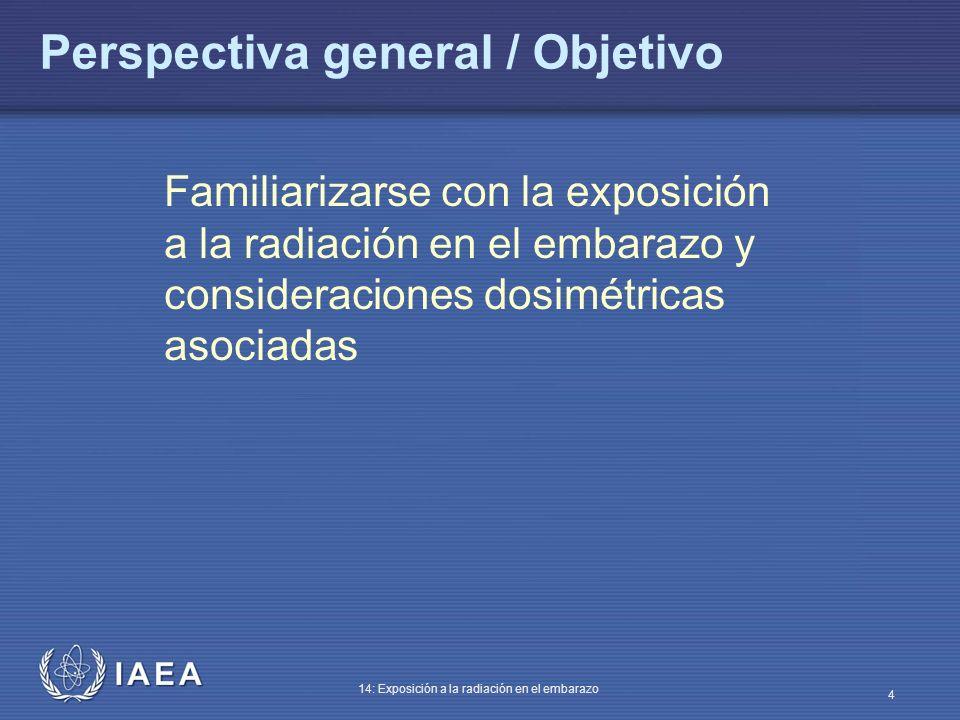 Perspectiva general / Objetivo
