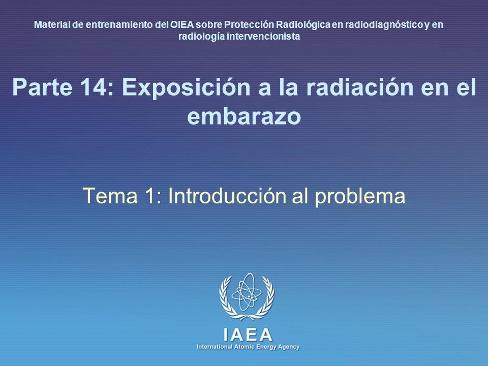 Parte 14: Exposición a la radiación en el embarazo