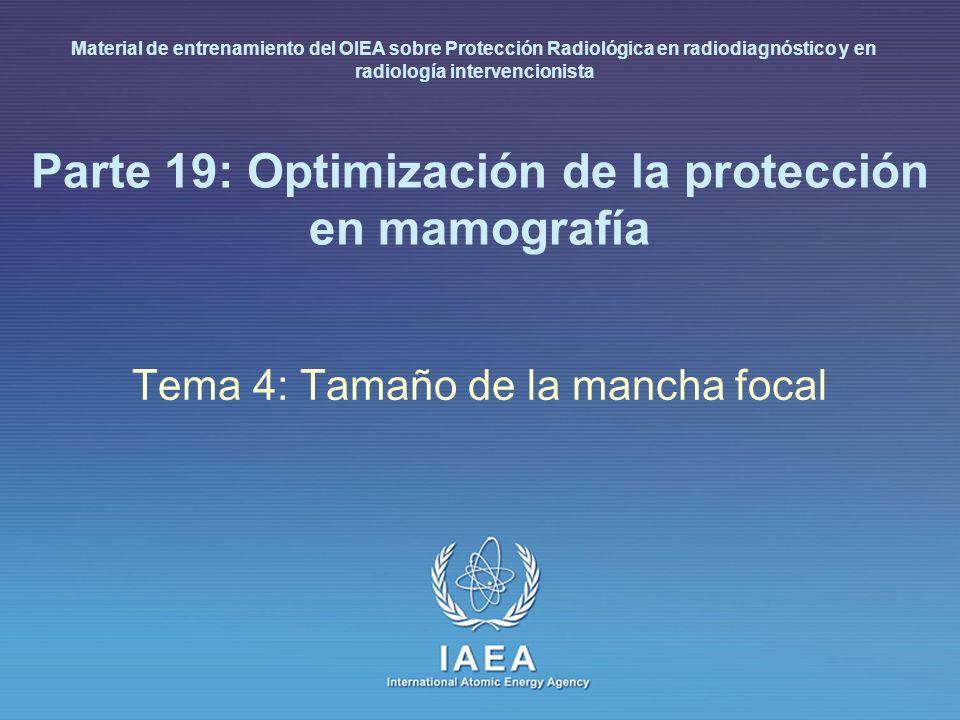 Parte 19: Optimización de la protección en mamografía