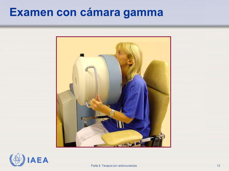 Examen con cámara gamma