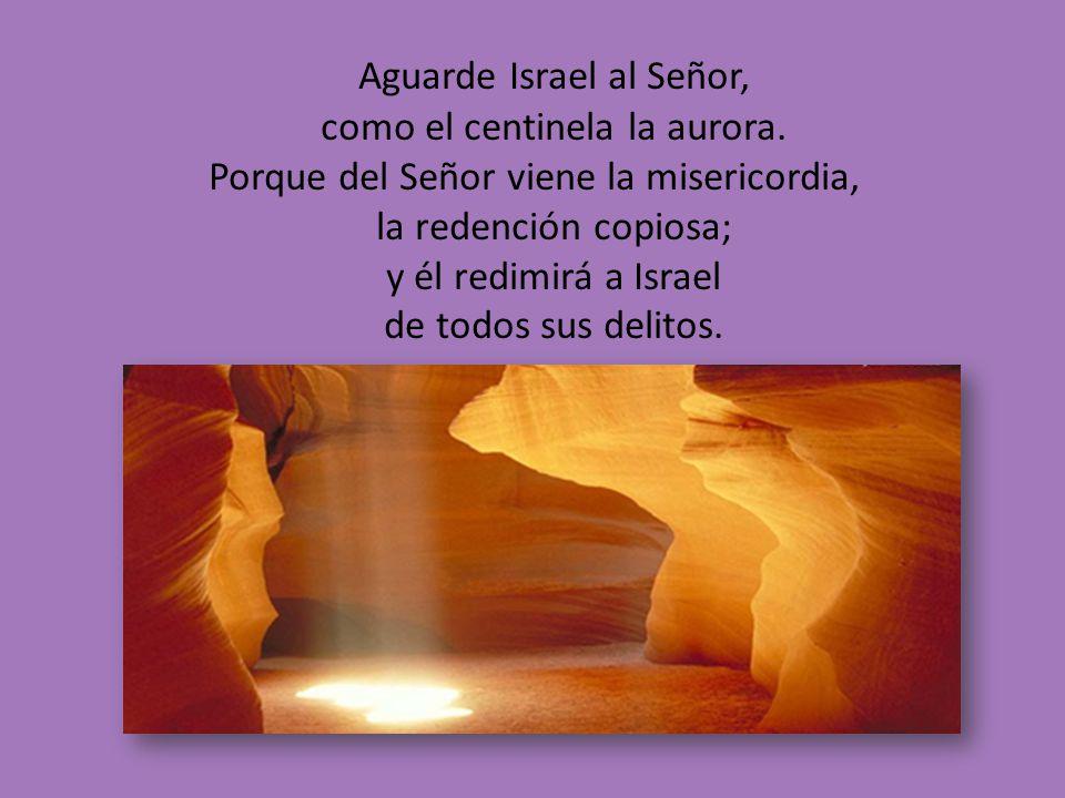 Aguarde Israel al Señor, como el centinela la aurora.