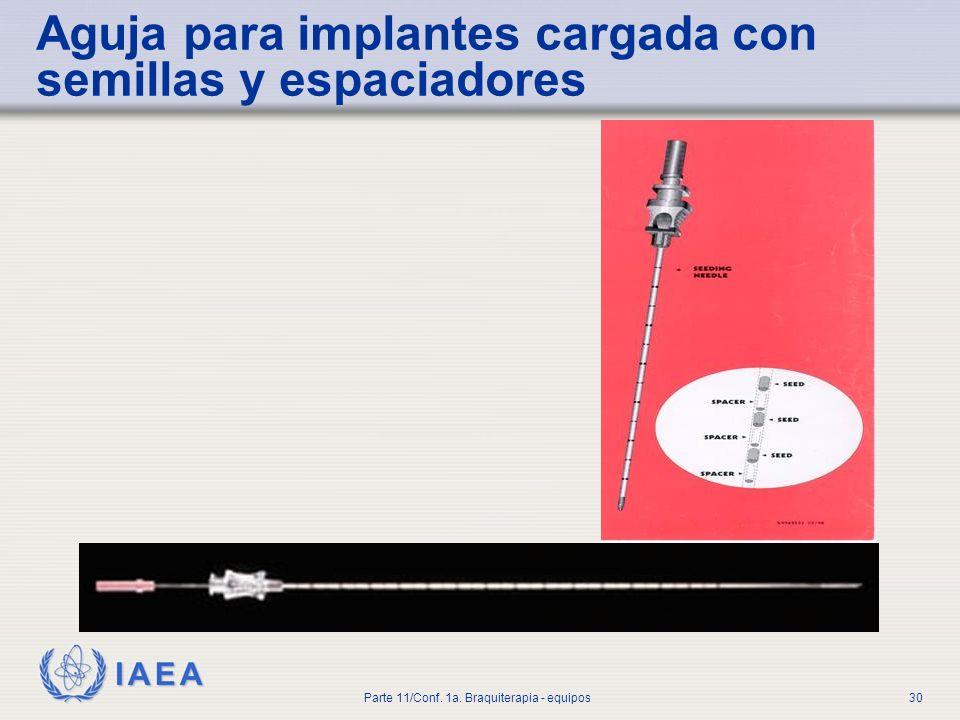 Aguja para implantes cargada con semillas y espaciadores