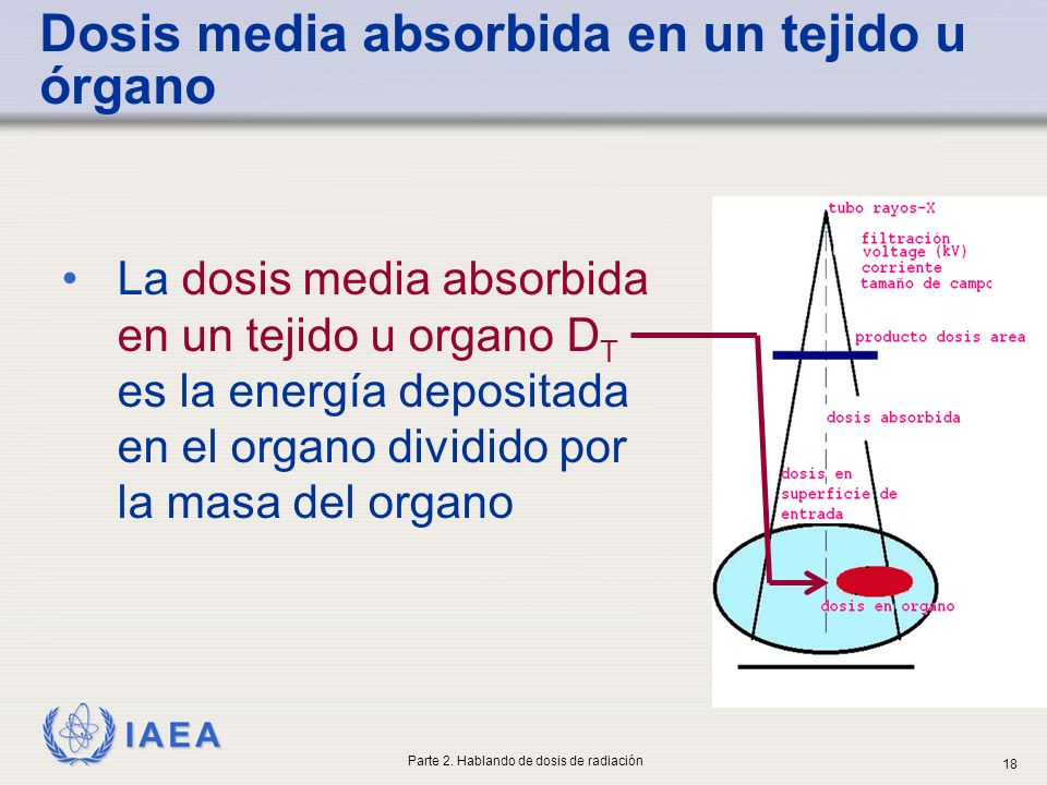 Dosis media absorbida en un tejido u órgano