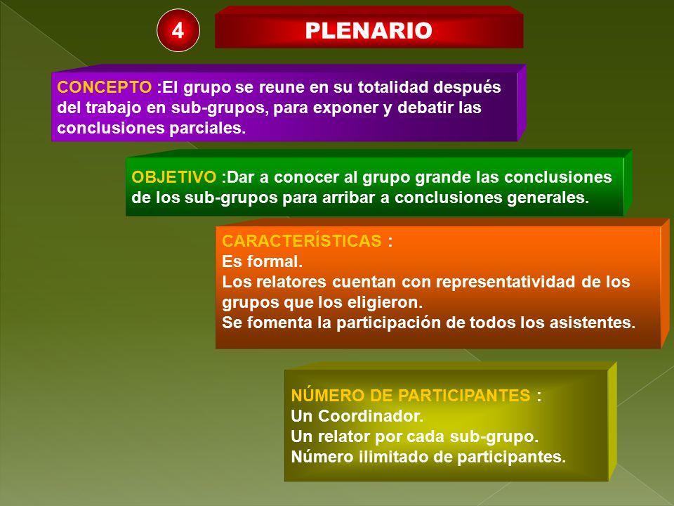 4 PLENARIO CONCEPTO :El grupo se reune en su totalidad después
