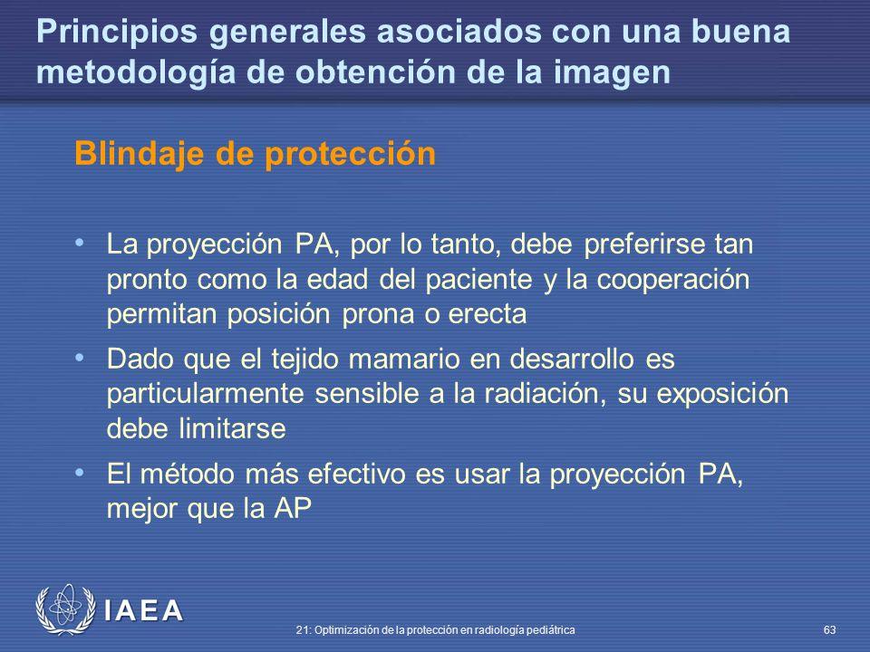 Blindaje de protección