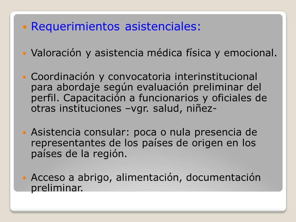 Requerimientos asistenciales: