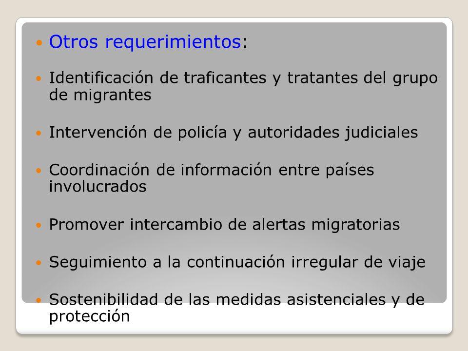 Otros requerimientos: