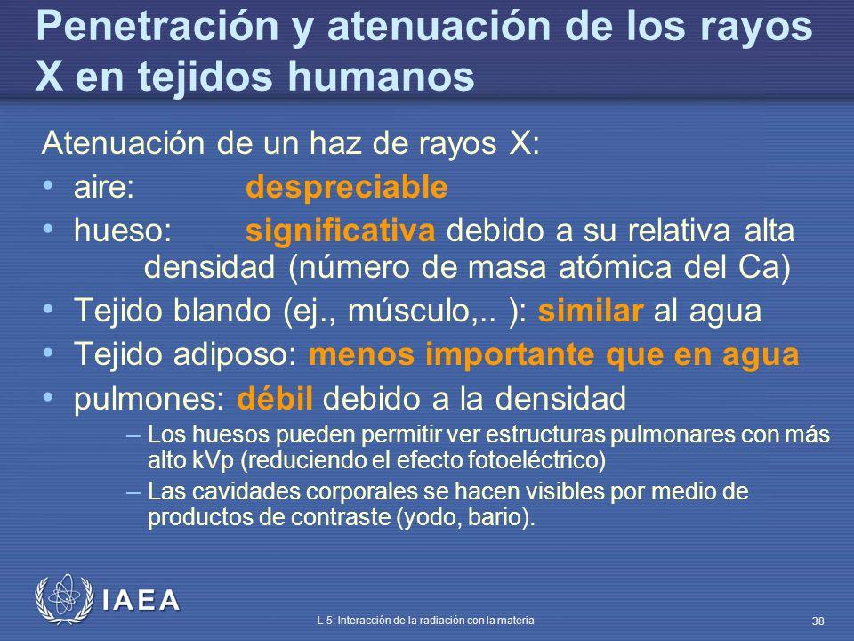 Penetración y atenuación de los rayos X en tejidos humanos