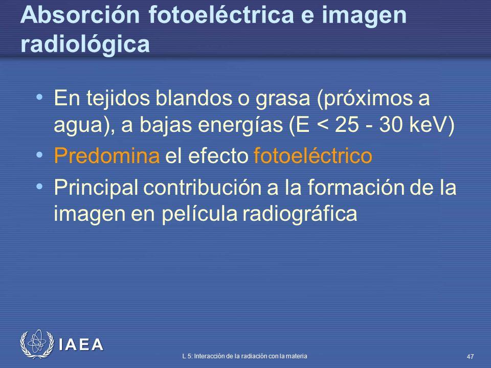 Absorción fotoeléctrica e imagen radiológica