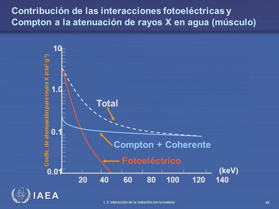 Contribución de las interacciones fotoeléctricas y Compton a la atenuación de rayos X en agua (músculo)