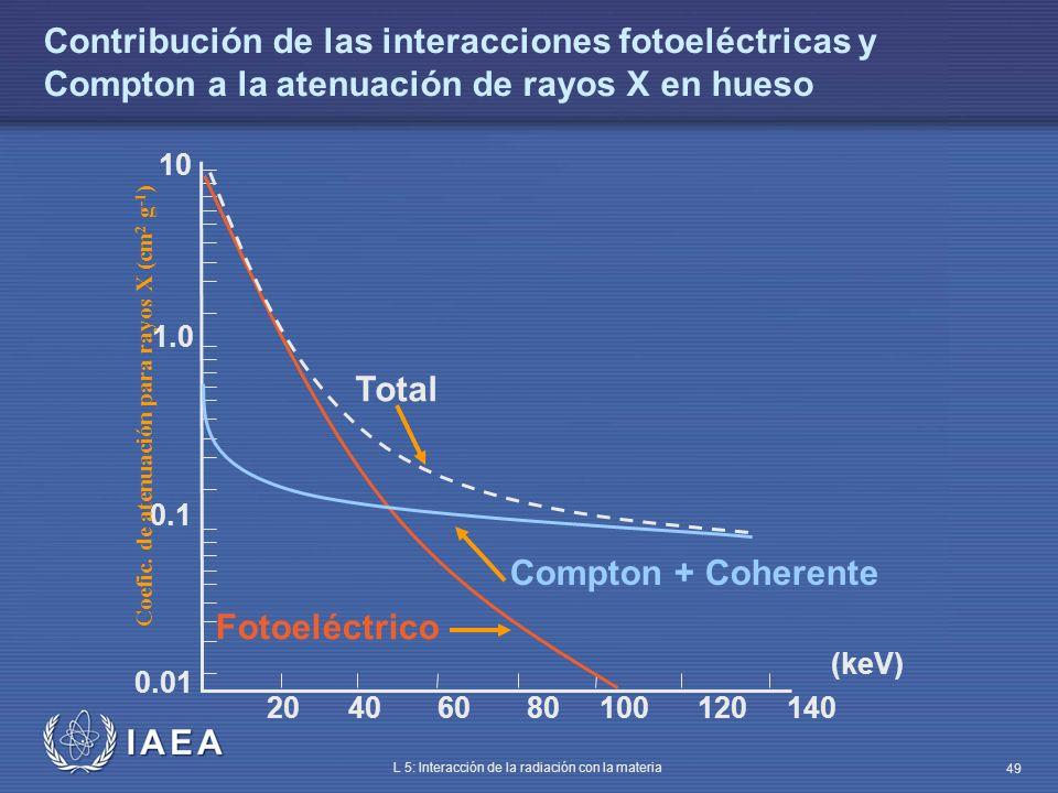 Contribución de las interacciones fotoeléctricas y Compton a la atenuación de rayos X en hueso