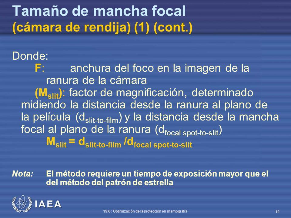 Tamaño de mancha focal (cámara de rendija) (1) (cont.)