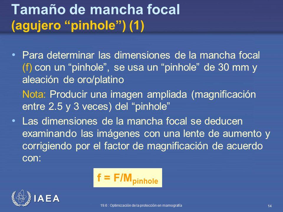Tamaño de mancha focal (agujero pinhole ) (1)