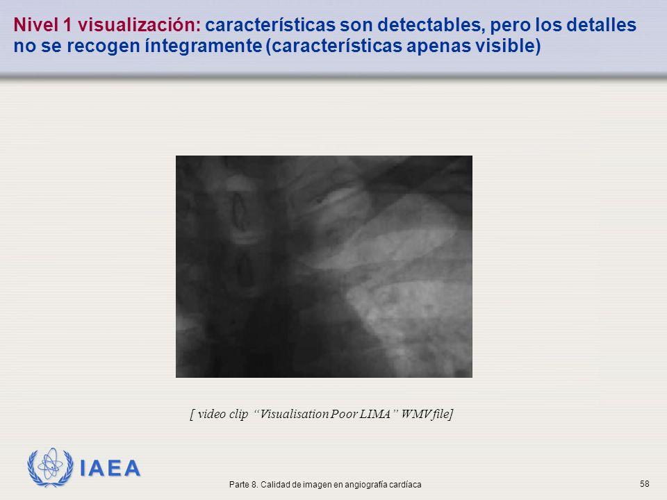 Nivel 1 visualización: características son detectables, pero los detalles no se recogen íntegramente (características apenas visible)