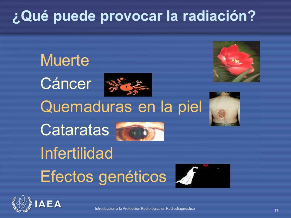 ¿Qué puede provocar la radiación