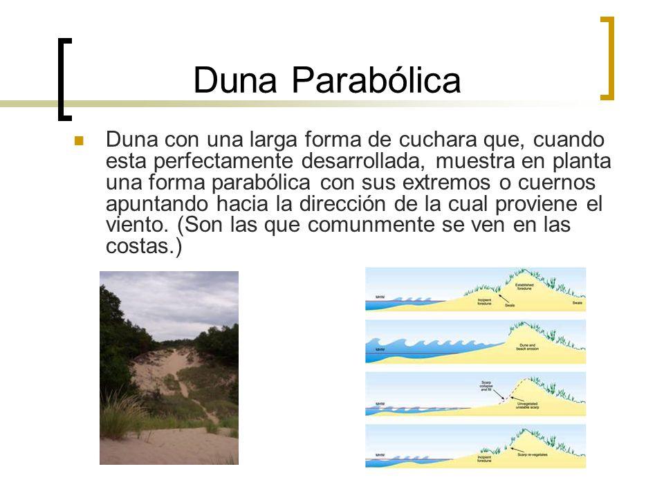Duna Parabólica
