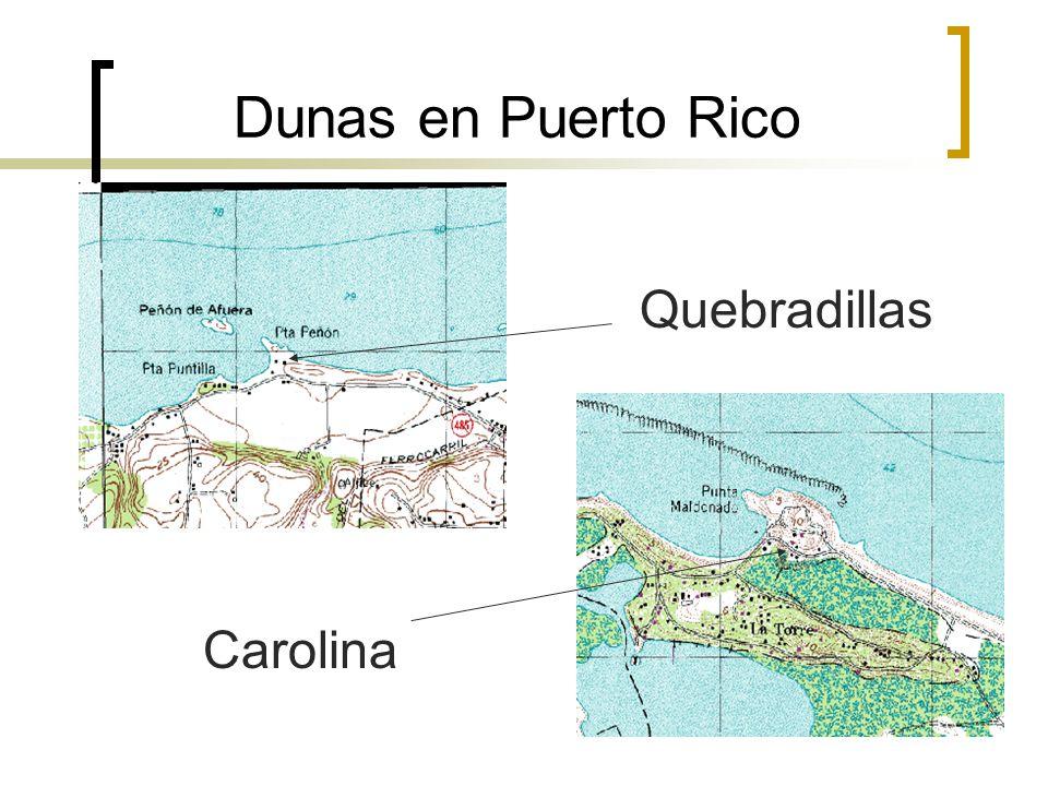 Dunas en Puerto Rico Quebradillas Carolina