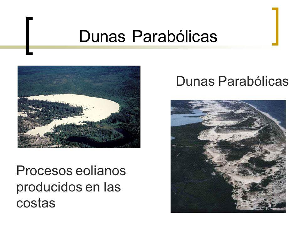 Dunas Parabólicas Dunas Parabólicas