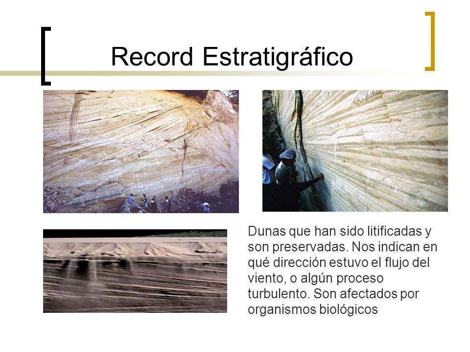 Record Estratigráfico
