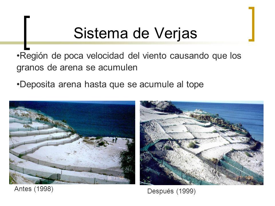 Sistema de Verjas •Región de poca velocidad del viento causando que los granos de arena se acumulen.