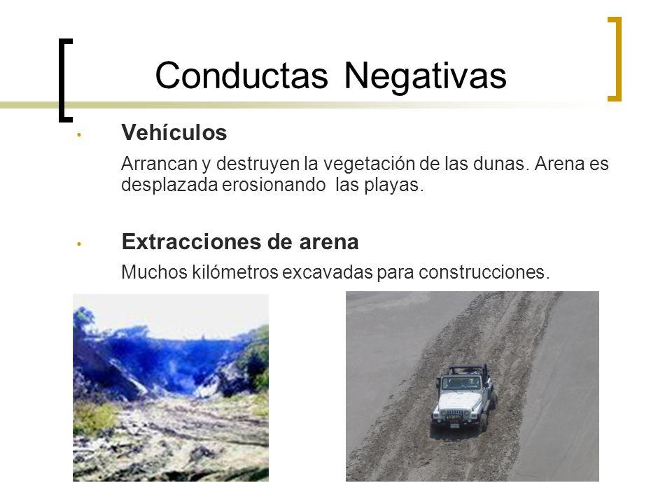 Conductas Negativas Vehículos