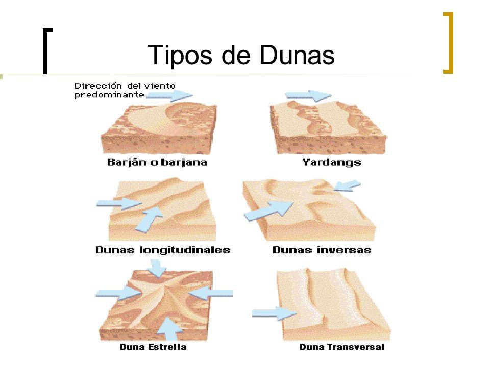 Tipos de Dunas