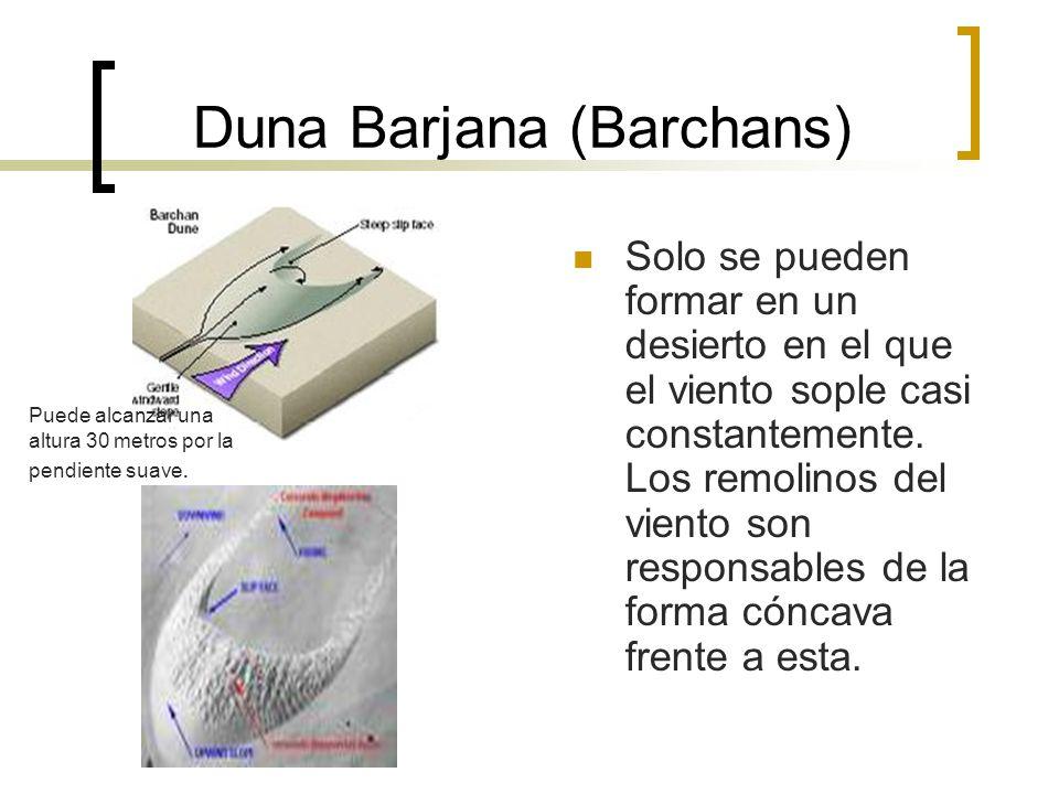 Duna Barjana (Barchans)