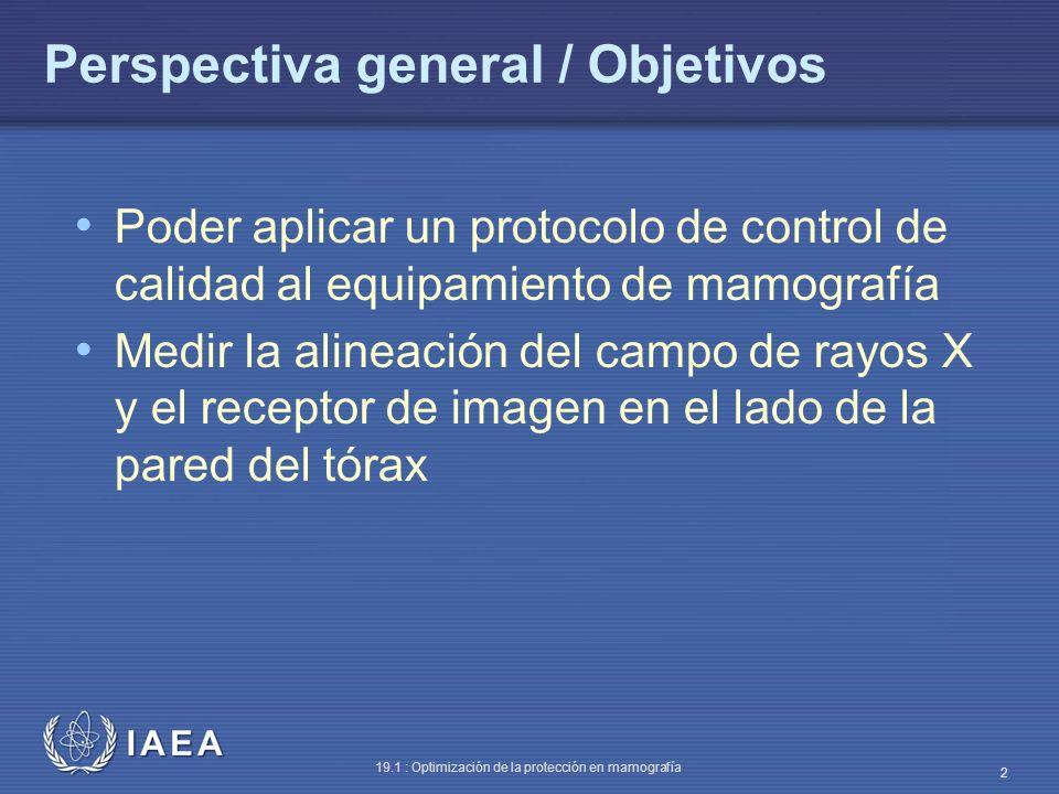 Perspectiva general / Objetivos