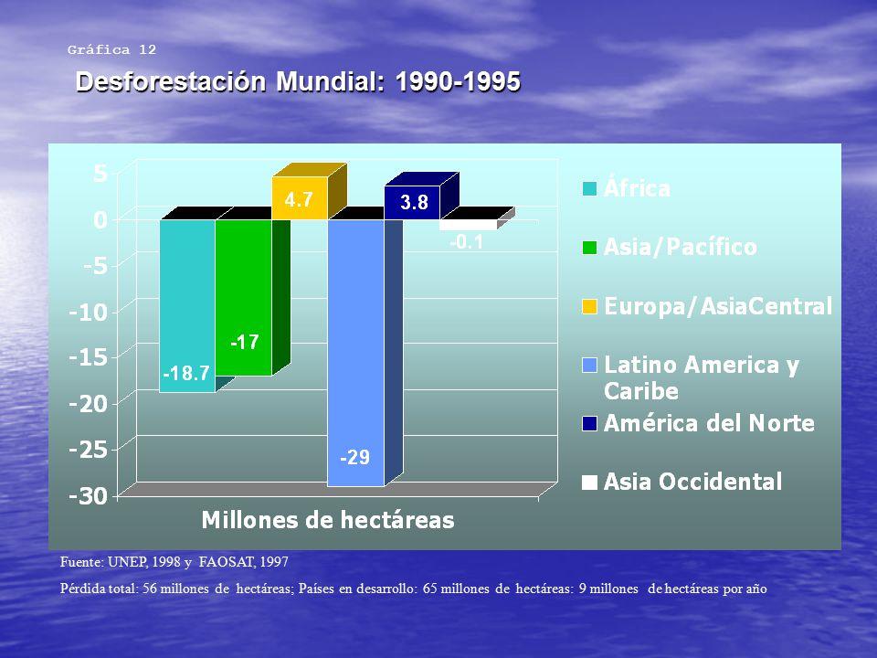 Desforestación Mundial: 1990-1995